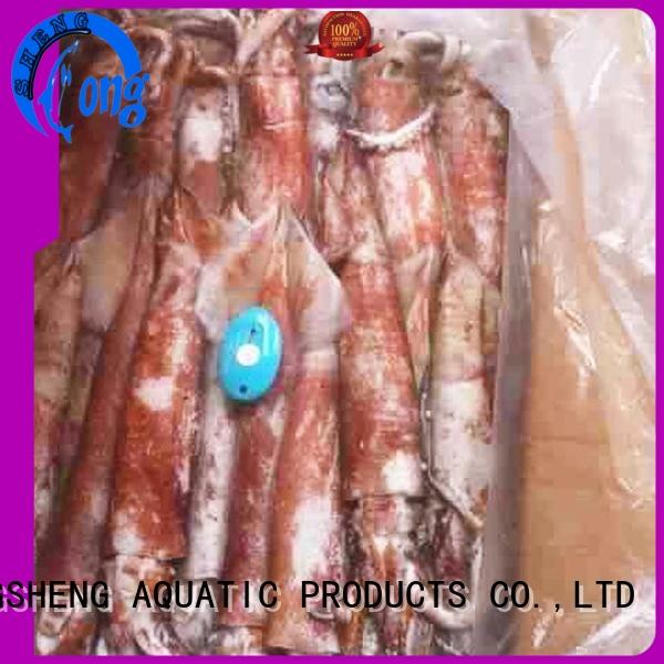 round squid wholesale on sale for cafeteria