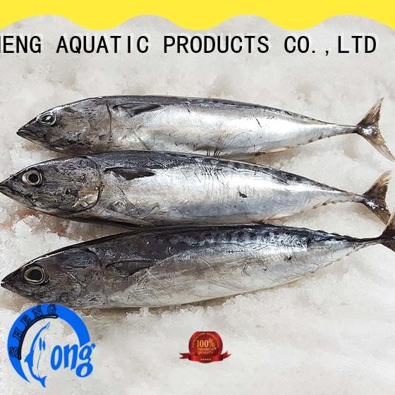 high quality wholesale frozen fish prices bonito Suppliers for family