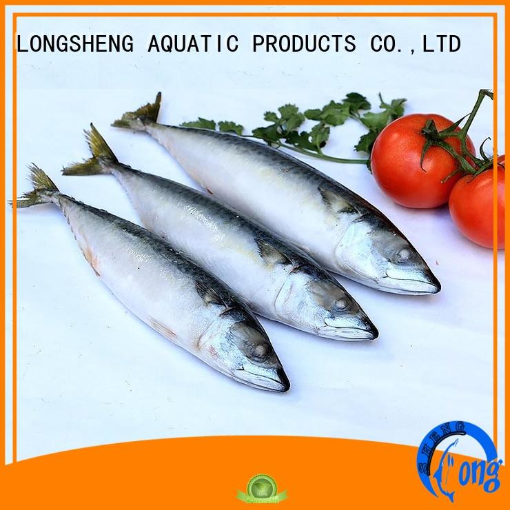 whole frozen mackerel fish LongSheng