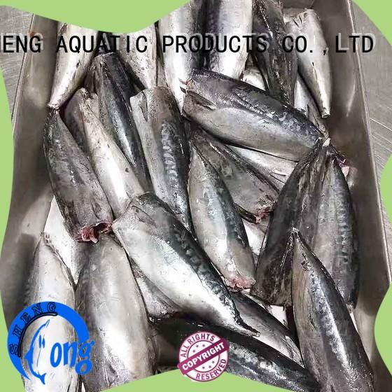 security bonito for sale frozen on sale for family