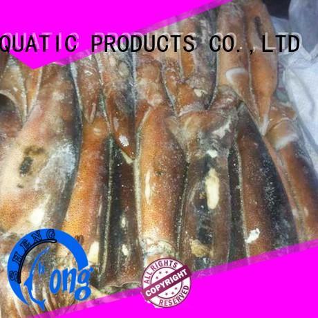 bulk buy frozen squid price argintinus for restaurant