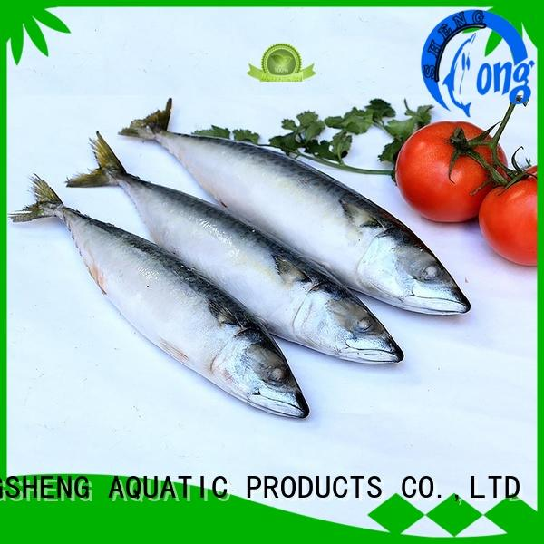 LongSheng best frozen pacific mackerel fish manufacturers for supermarket