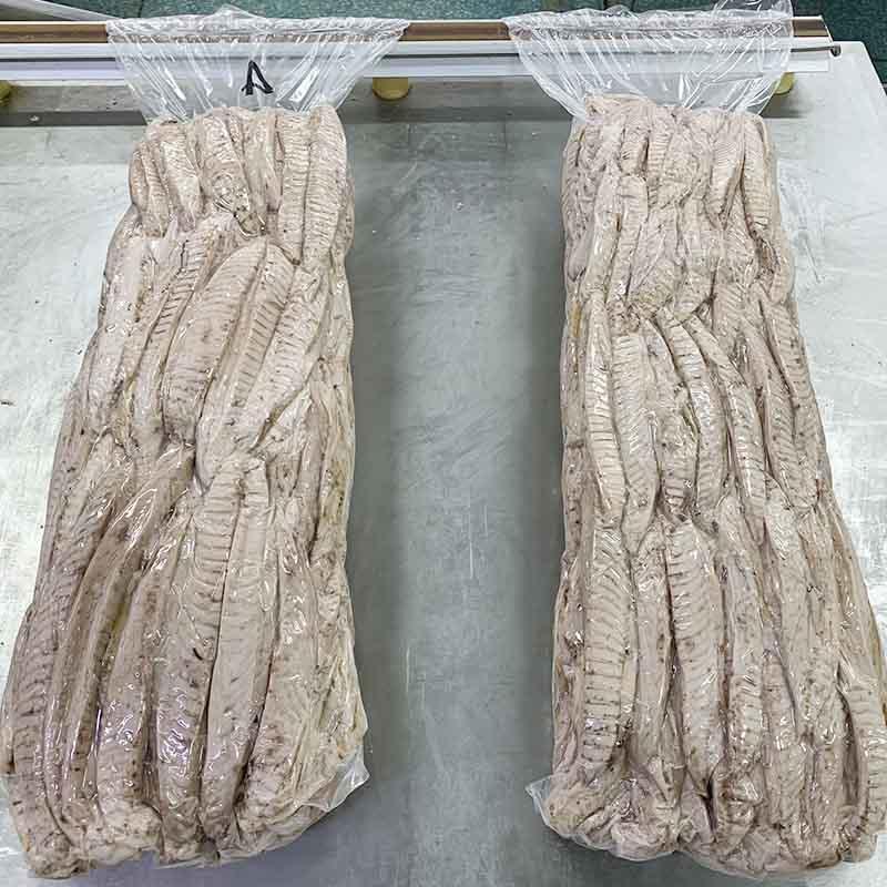 замороженные рыбные корейки и поясница Бонито (auxis Thazard)