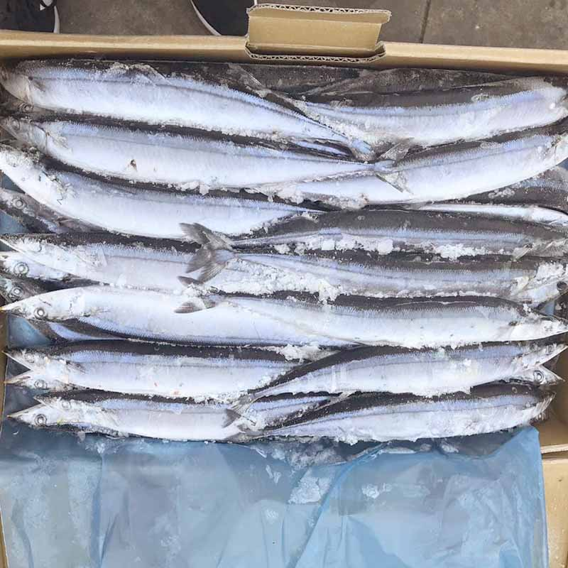 LongSheng healthy frozen fish companies delivery for cafeteria-LongSheng-img