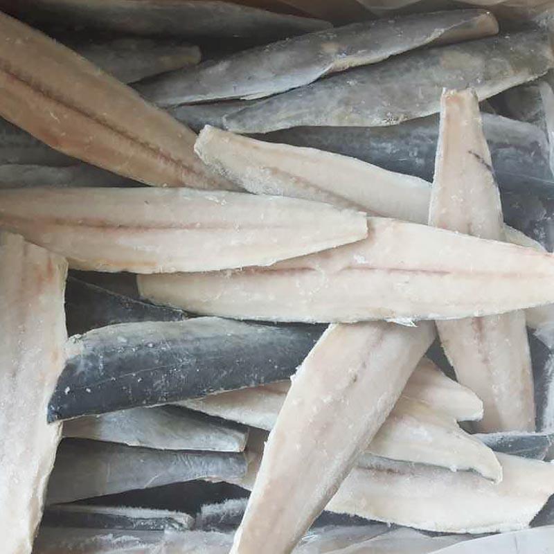 продажа филе замороженной испанской скумбрии