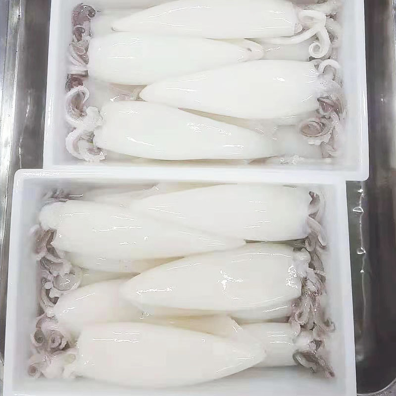 LongSheng tubetentacle) frozen cuttlefish for sale factory for cafeteria-1