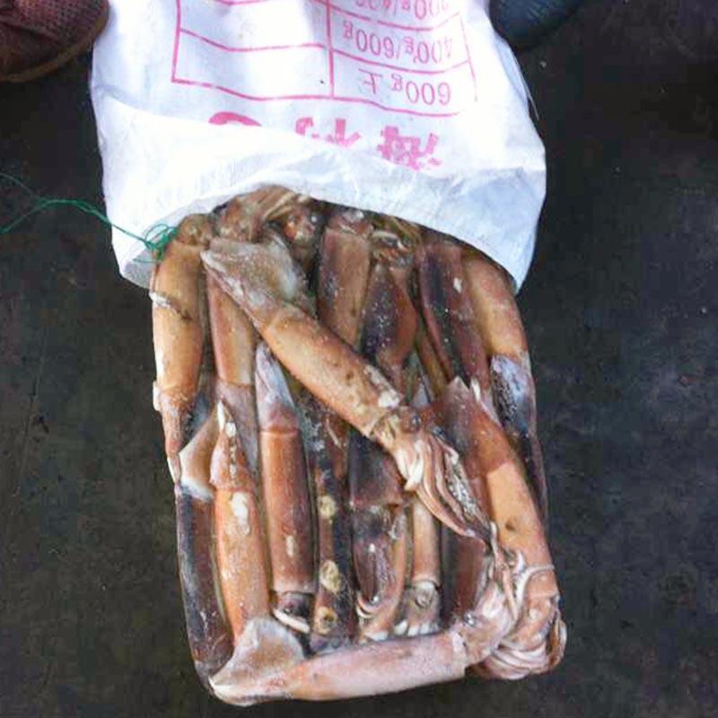 оптом кальмары круглые и каракатицы замороженные (Illex argintinus)