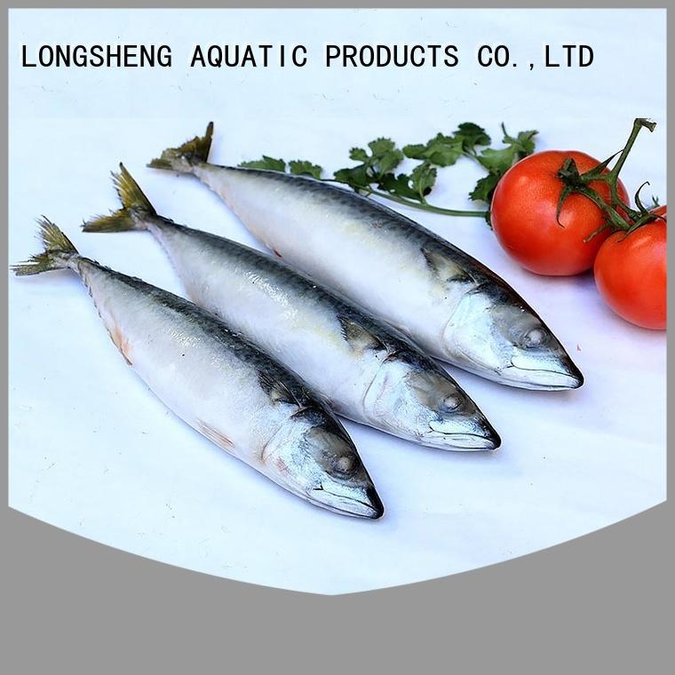 High-quality frozen mackerel hgt fishfrozen for market