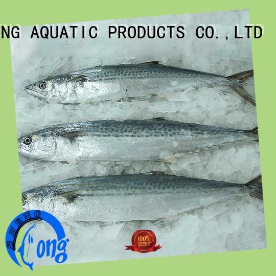 LongSheng spanish fish frozen on sale for seafood market