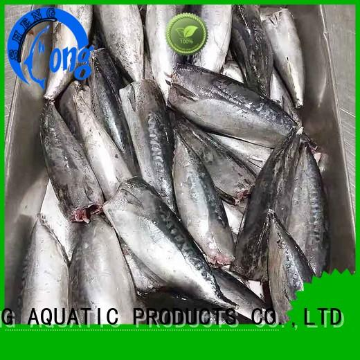 LongSheng High-quality frozen bonito fish Supply for seafood shop