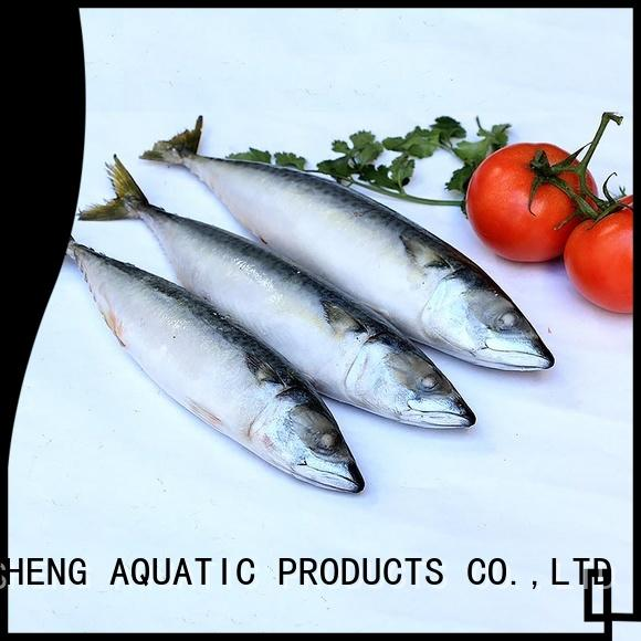 New mackerel for sale mackerel Suppliers for hotel