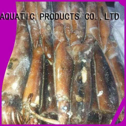 LongSheng fish frozen squid tubes Suppliers for cafe