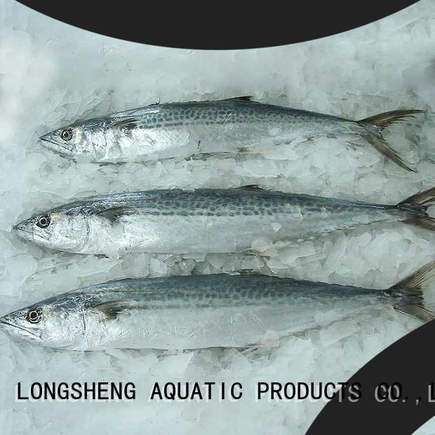LongSheng High-quality frozen spanish mackerel whole round Supply for market