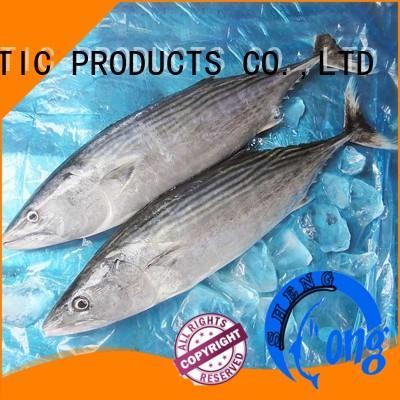 LongSheng Wholesale frozen bonito tuna factory for party