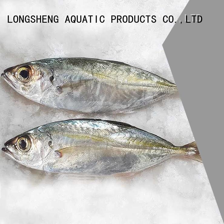 LongSheng frozen whole round horse mackerel Supply for cafe