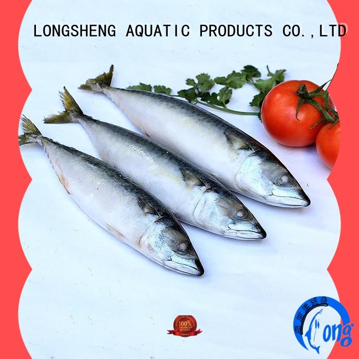 LongSheng whole frozen mackerel fillet fillets
