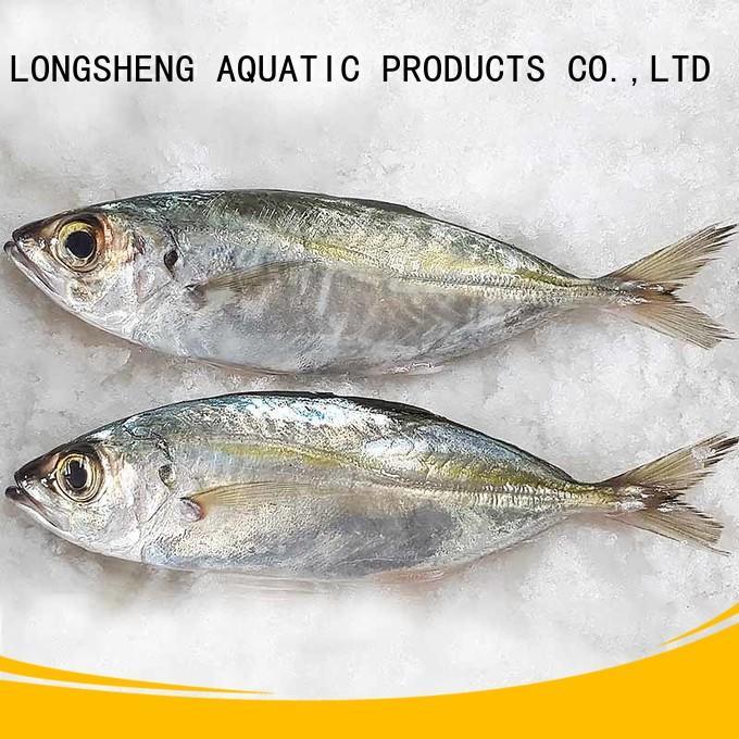 LongSheng Best Frozen Horse mackerel whole round for business for restaurant