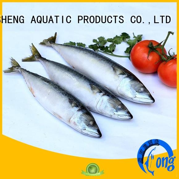 LongSheng good quality frozen mackerel fillets supplier for supermarket