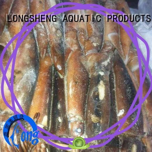 LongSheng clean frozen squid illex company for cafe