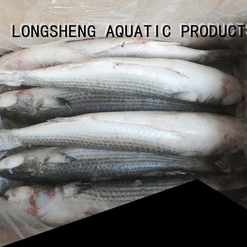 LongSheng fillet frozen seafood supplier factory for market
