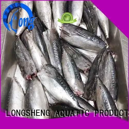 frozen Bonito fish HGT