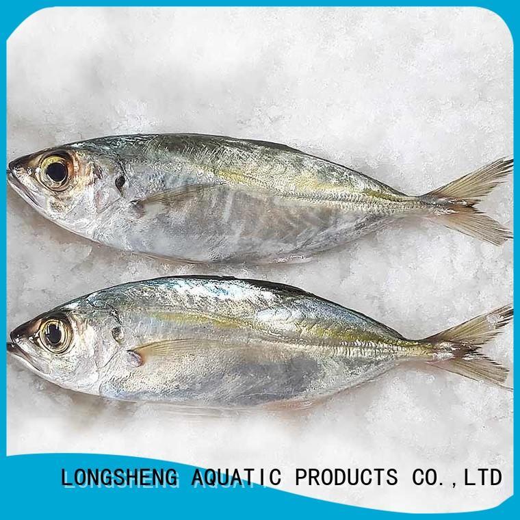 LongSheng Best horse mackerel frozen fish for business for restaurant