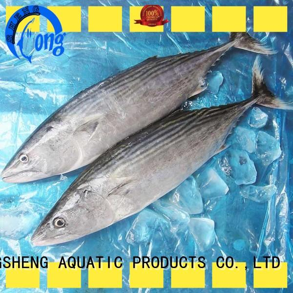 professional bonito tuna fish manufacturers for lunch