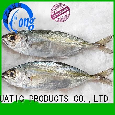 LongSheng trachurus frozen whole round horse mackerel factory for cafe