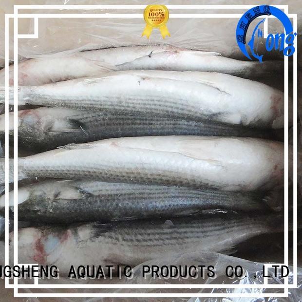 professional frozen fish wholesale fillet for restaurant