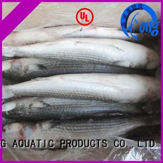 LongSheng fillet frozen seafood supplier supplier for hotel