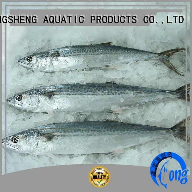 LongSheng technical frozen fish for sale online for seafood market