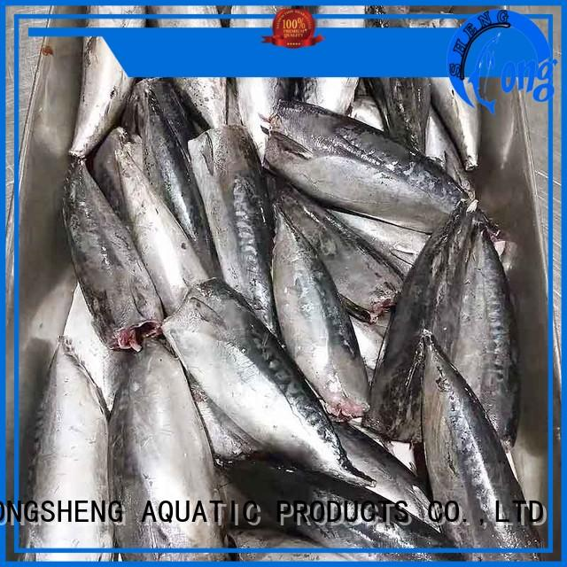 frozen bonito fish price bonito for business for market