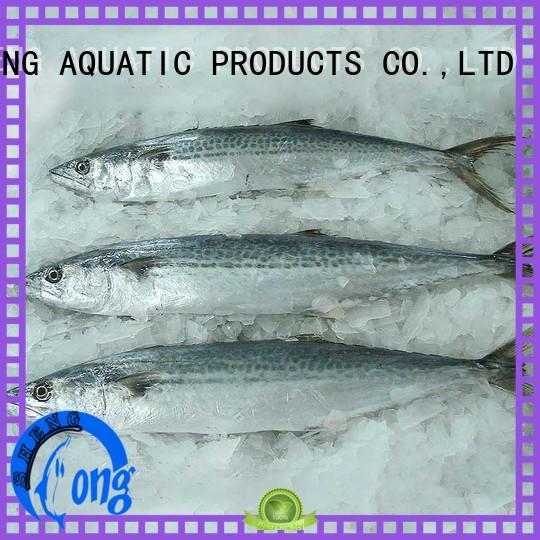 LongSheng technical frozen spanish mackerel for sale company for market