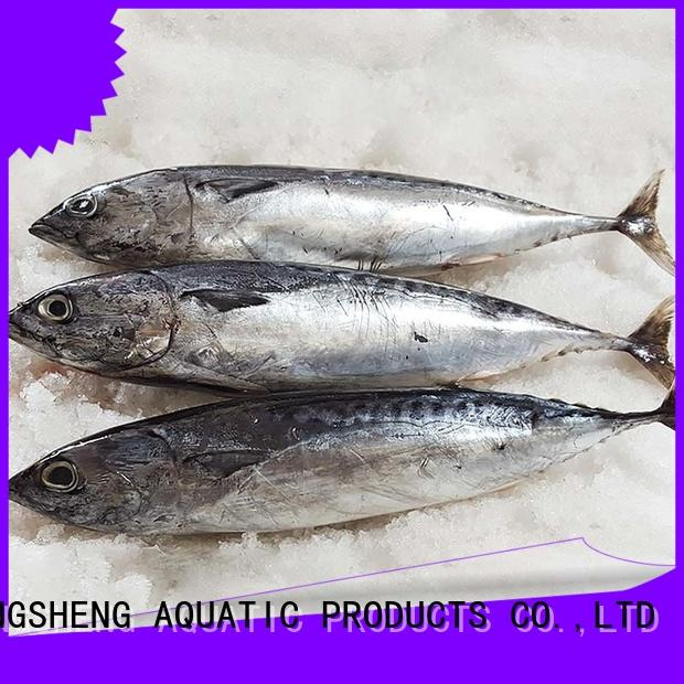 wholesale frozen bonito fish sale whole company for supermarket