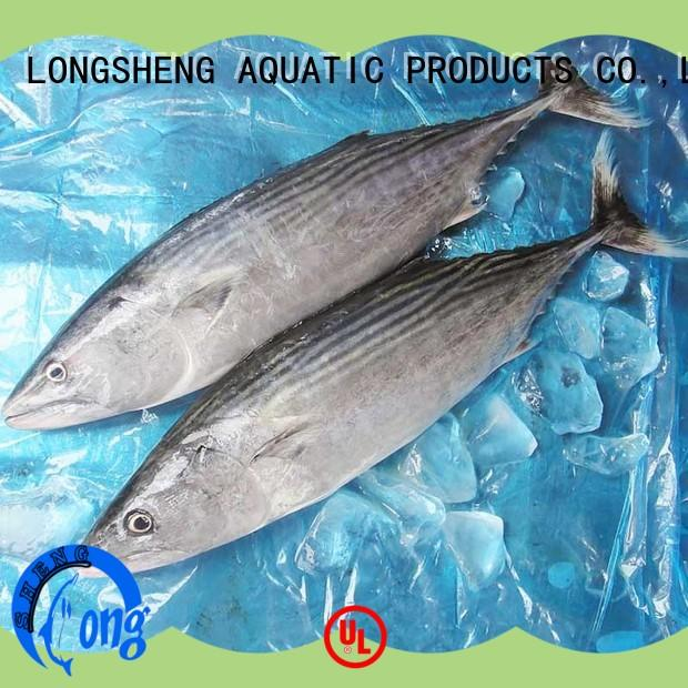 High-quality bonito tuna surpplier sarda manufacturers for lunch