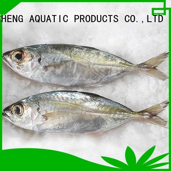 Best horse mackerel frozen whole factory for hotel