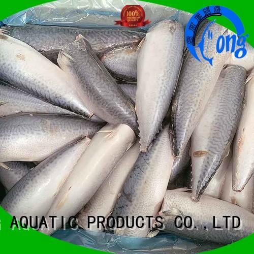 Wholesale frozen whole mackerel mackerel for hotel