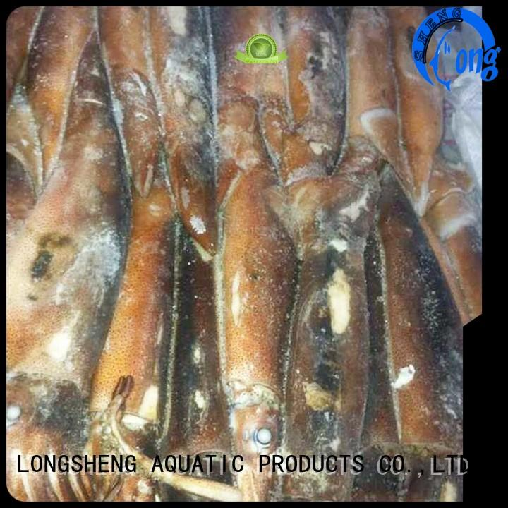 tube frozen loligo squid delivery for restaurant LongSheng