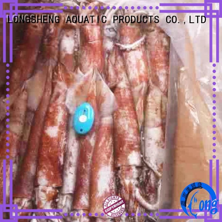 healthy frozen uncleaned squid round Supply for hotel