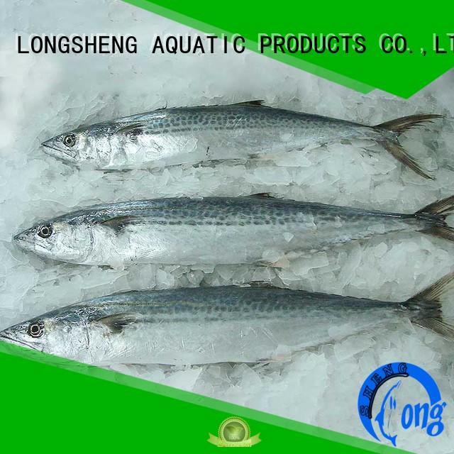 spanish mackerel fish price mackerel for seafood shop LongSheng