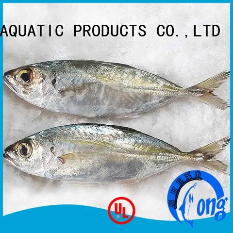 Horse mackerel frozen fish whole round (Trachurus Japonicus)