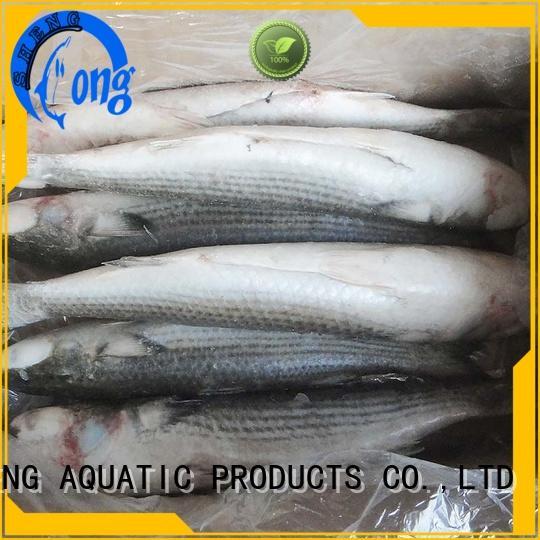 frozen fish manufacturers mullet for supermarket LongSheng