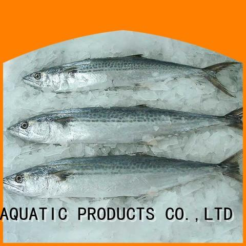 LongSheng security frozen fish supplier for business for market