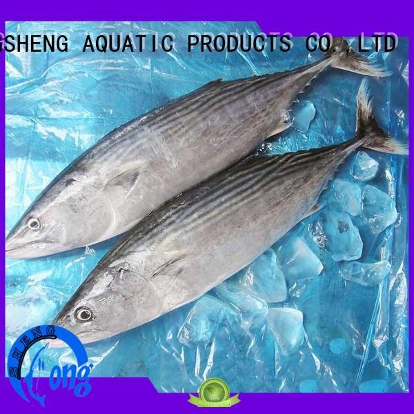 LongSheng popular frozen bonito tuna factory for lunch