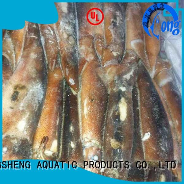 LongSheng cuttlefish frozen squid for sale delivery for hotel