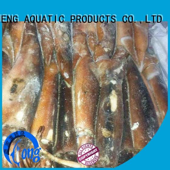 clean frozen squid tubes chinese manufacturer for hotel