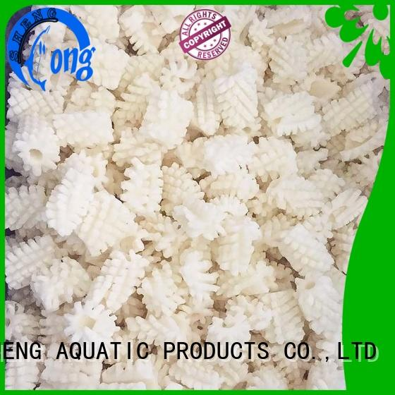 LongSheng clean frozen squid for sale delivery for hotel