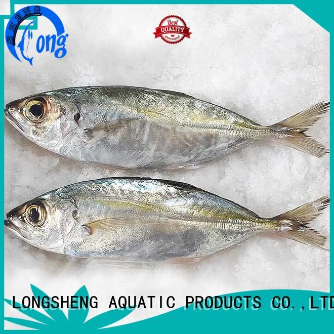 LongSheng natural frozen horse mackerel fish online for cafeteria