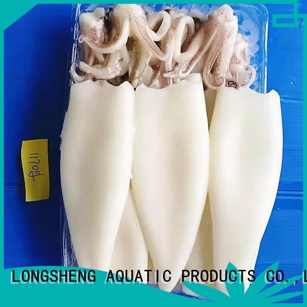 LongSheng loligo frzozen squid t+t Suppliers for hotel