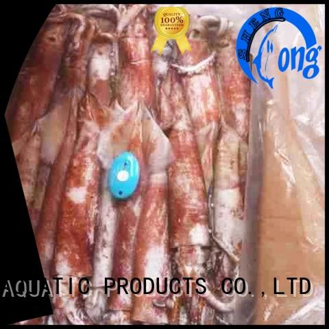 clean squid wholesale flowersquid for business for cafe